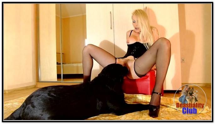 Jenny Simpson - Animal Sex Pornstars