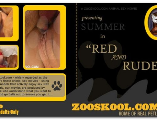 Home Of Real PetLover – Summer Red And Rude
