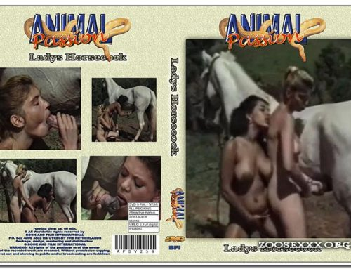 Animal Passion – Ladys Horse Cock