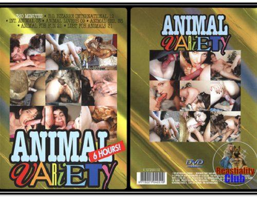 Scala – Animal Variety 13 – 2
