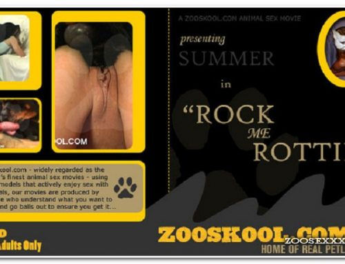 Home Of Real PetLover – Summer Rock Me Rottie