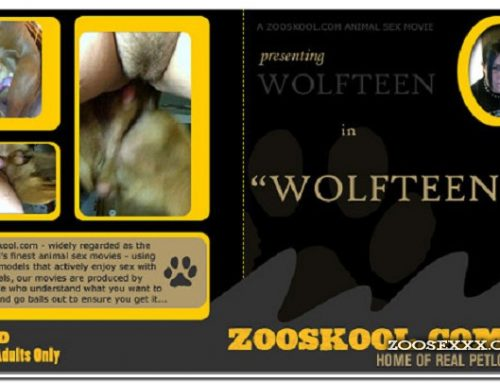 Home Of Real PetLover – Wolf Teen Wolfteen 1