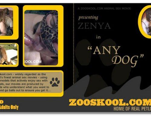 Home Of Real PetLover – Zenya Any Dog