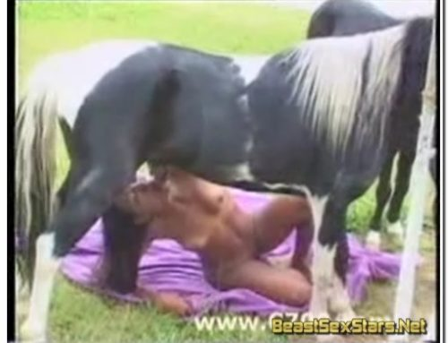 0076 – Outdoor horse sex