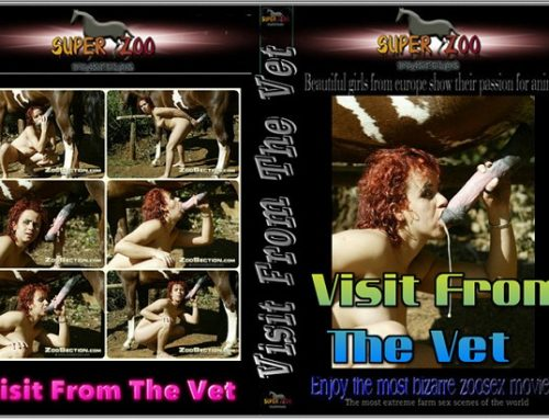 Super Zoo – Visit From The Vet