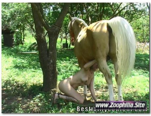 0116 – EXTREME SCENES OF SEX WITH VARIOUS ANIMALS