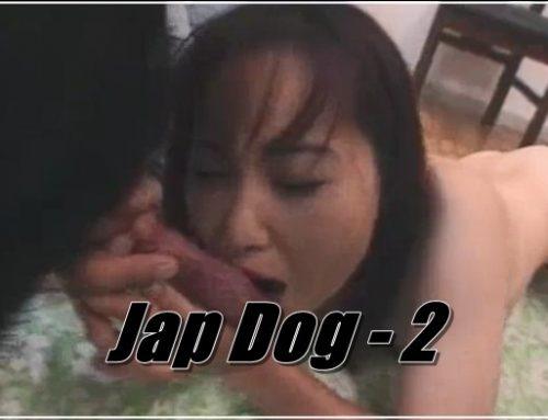 Jap Dog – 2