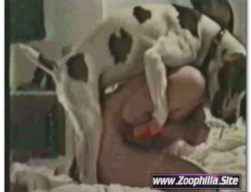 Amateur Animal Sex – 789