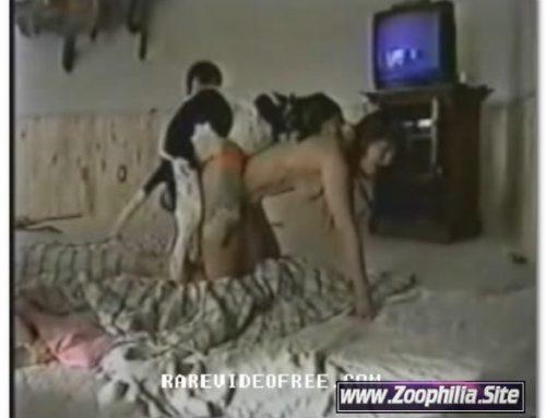 Amateur Animal Sex – 793