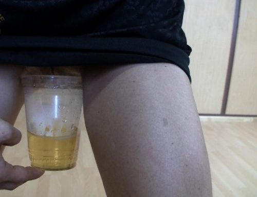 Extreme Scat Domination – Pee, vomit and crap for the toilet